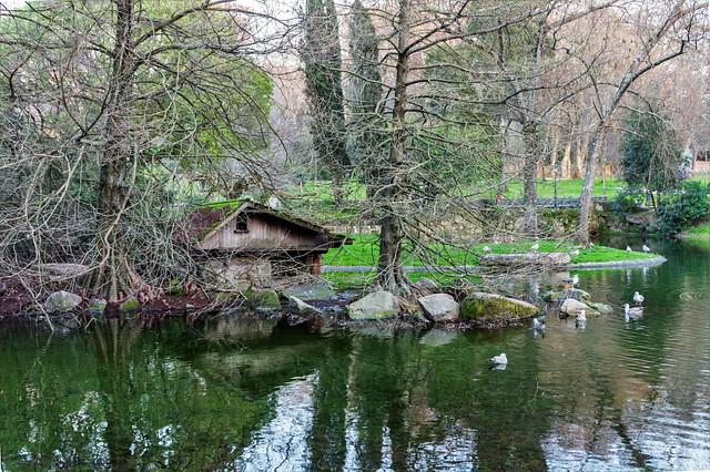 La casa de los patos-_DSC2154