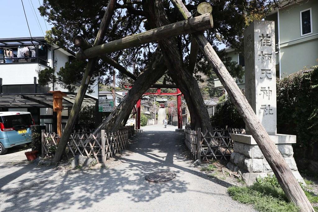 鎌倉の中古戸建 学問の神様菅原道真を祀った荏柄天神社の入り口
