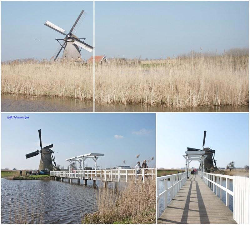 travel-Netherlands-Rotterdam-Kinderdijk-BLOG-17docintaipei (19)