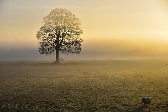 DAYBREAK   Beautiful morning in Glazebury Cheshire England