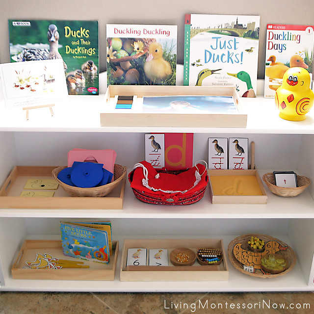 Montessori Shelves with Duckling-Themed Activities