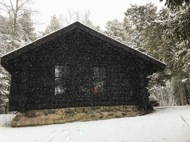 A love letter // a short list of things we forgot: *Upon entering Wilderness State Park, Oliver proclaimed he didn't pack a coat. (It's snowing) *Something to brew coffee, but we remembered the coffee. *Something to boil water in, but we remembered someth
