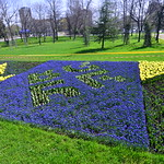 #UnitedWeGrow - Tulip Garden with Bulgarian Presidency Mosaic near the National Palace of Culture