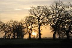 matin à Mayenne