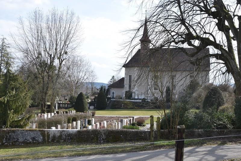 Feldbrunnen 25.03 (13)
