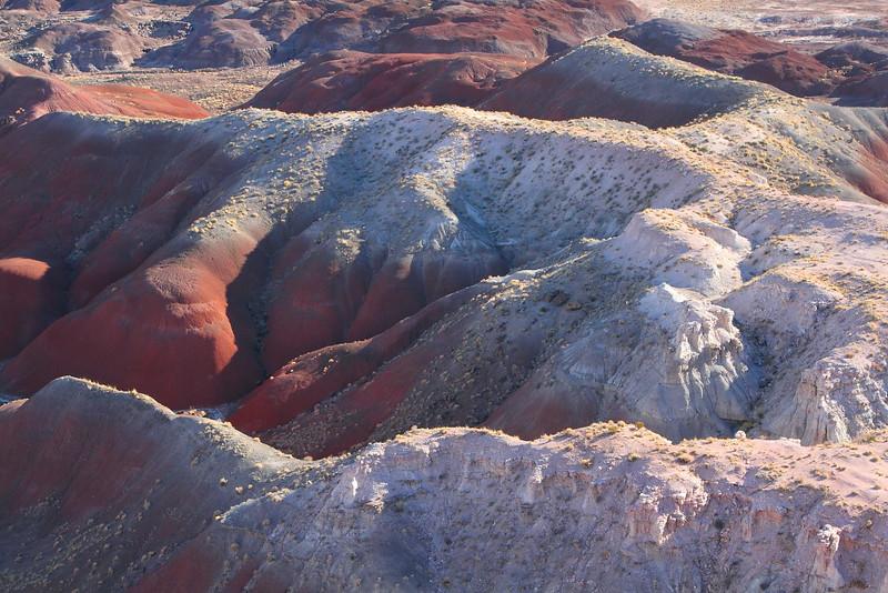 IMG_7330 Painted Desert
