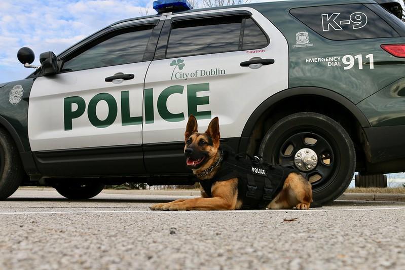 Dublin Police Welcome New K9 Officer