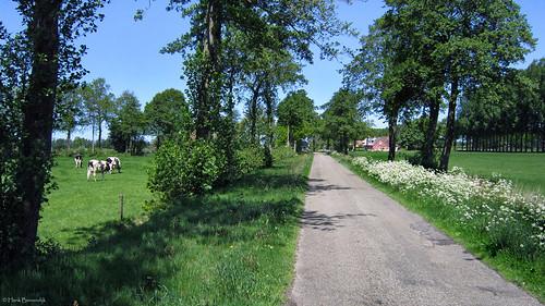 Groningen: Lucaswolde, Beldam