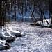 Shimmering Stream by bjorbrei