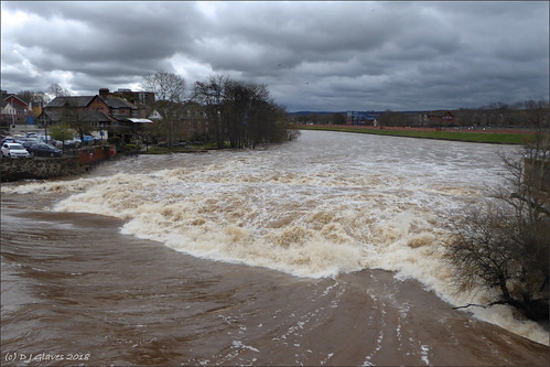 The Exe in spate