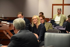 Rep. Hall speaks during a public hearing in the Planning and Development Committee