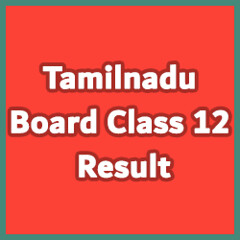 tn 12th result