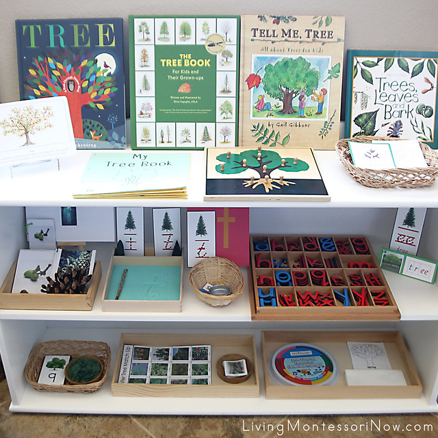 Montessori Shelves with Tree-Themed Activities