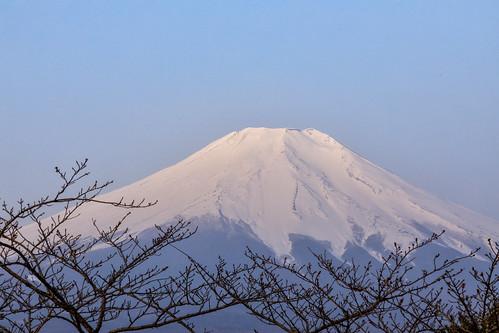 japan mtfuji fuji canon5dmarkiv fujiyama fujisan sunrise