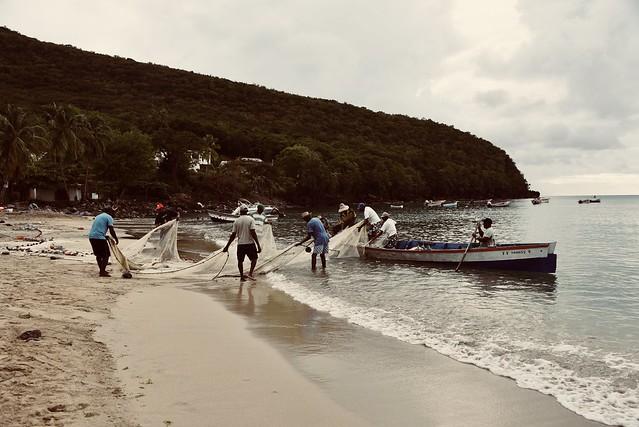 La Pêche à la Senne
