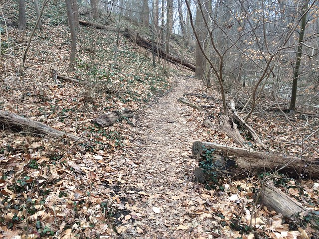 Soapstone Valley Park Trail
