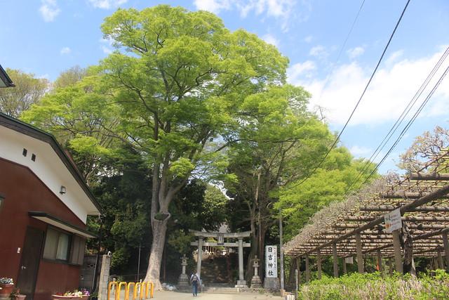 haijimahiyoshi-gosyuin04002