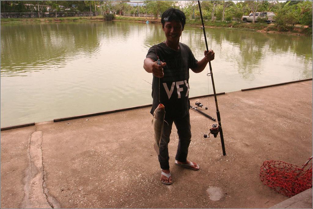 Thai_fish_06