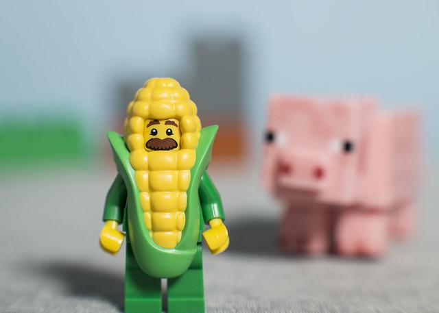 Corn Cob guy does not like pigs