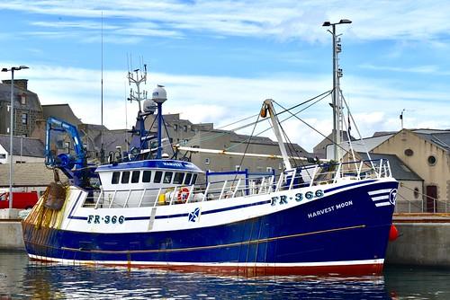 FR366 Harvest Moon - Fraserburgh Harbour Scotland - 19/4/2018