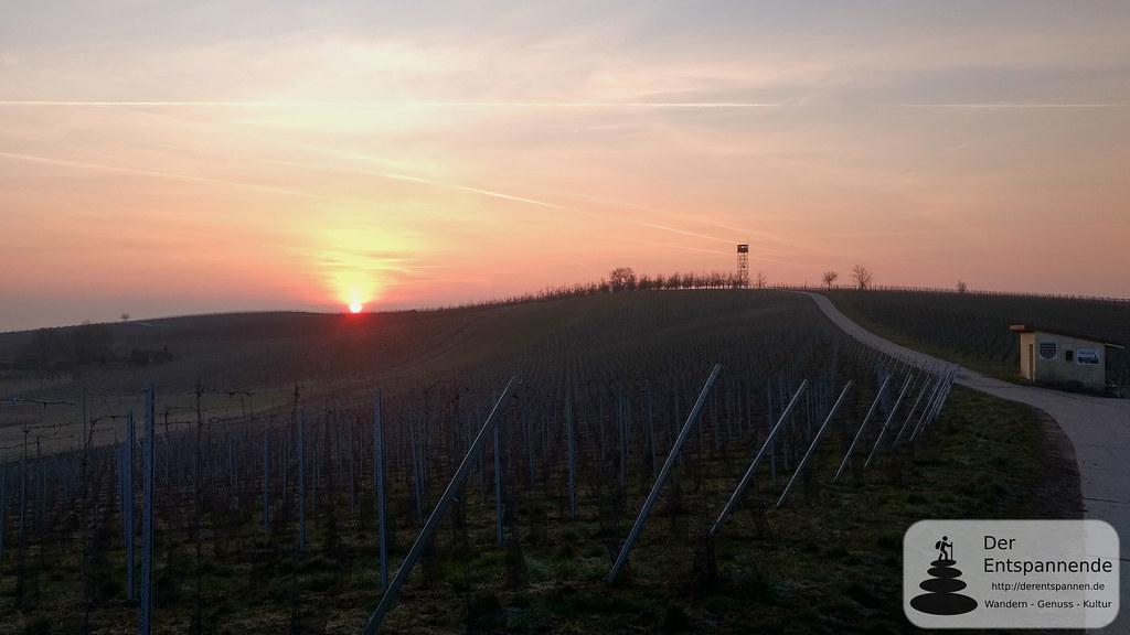 Sonnenaufgang am Ruhkreuz bei Zornheim