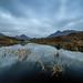 Loch nan Eilean - Scotland