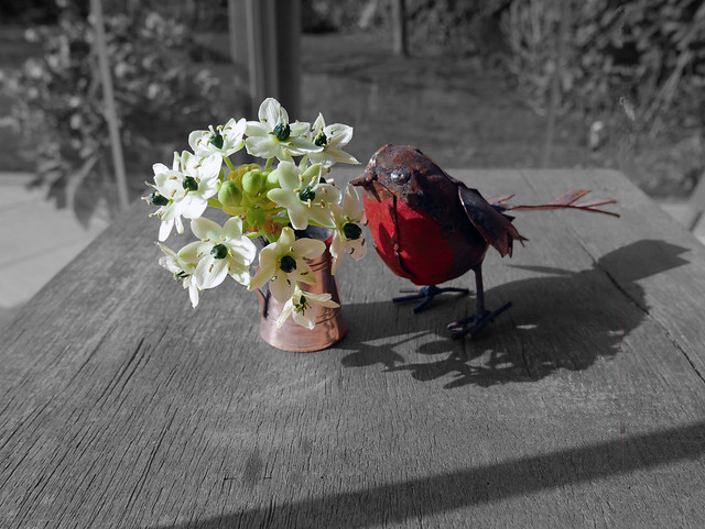 Achter je borsje bloemen kan  je fluiten!