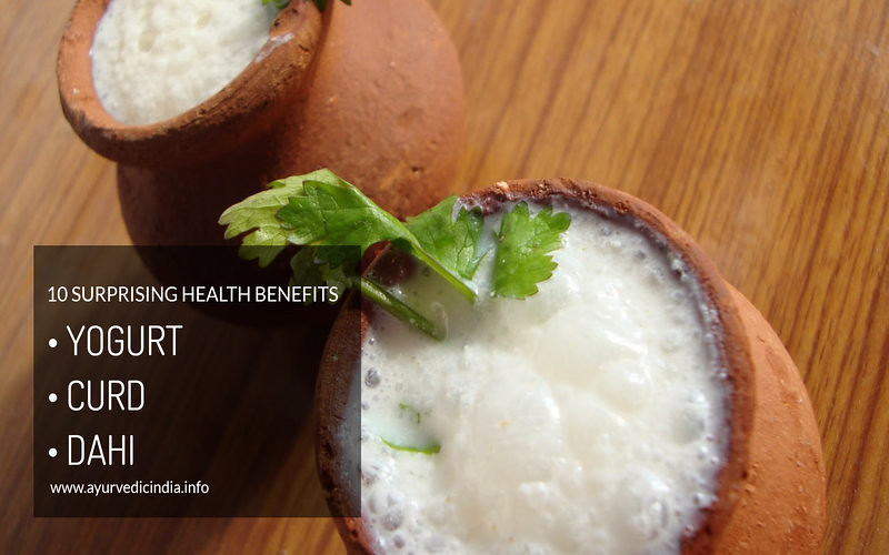 10 Surprising Health Benefits of Yogurt (CurdDahi)