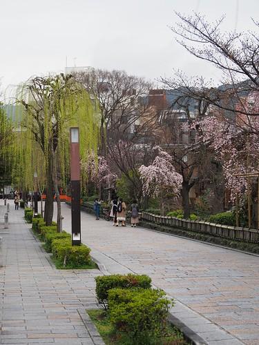 180319_Kyoto-005
