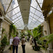 Small photo of Harlaxton Manor, conservatory
