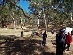 Adelaide Hills. Exploring the ruins at Almanda Silver Mines 1868 near Scott Creek.
