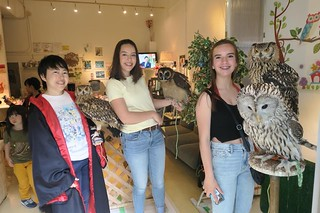 Garcia Girls at an Owl Cafe in Tokyo