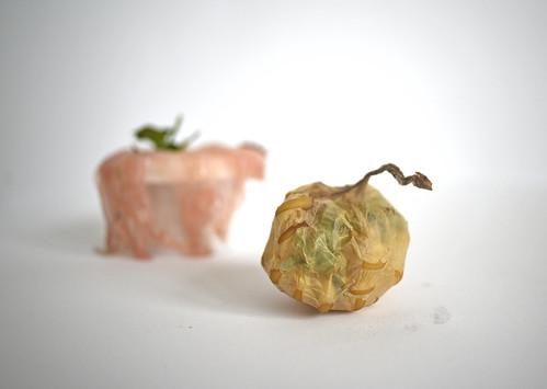 Róża Rutkowska1