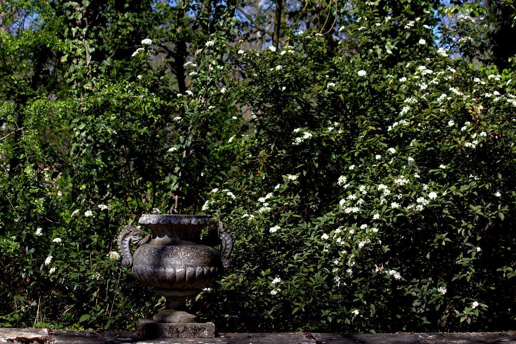jardines de Aranjuez en abril
