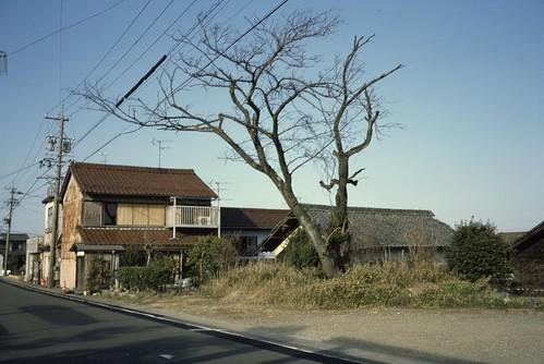 #154 Konobunakashima, Ichinomiya