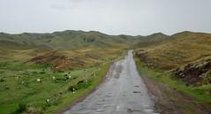 Charyn / Шарын (Kazakhstan) - Road to Kegen