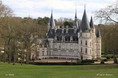 58 Pouilly_sur-Loire - Le Nozet - Photo of Saint-Quentin-sur-Nohain