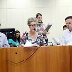 qui, 12/04/2018 - 14:13 - Data: 12/04/2018 Local: Plenário Camil CaramFoto: KarolineBarreto_CMBH