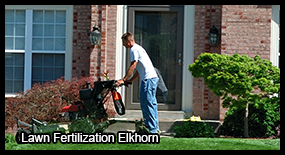 lawn fertilization elkhorn