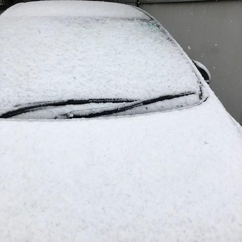 2018年春分の日の雪