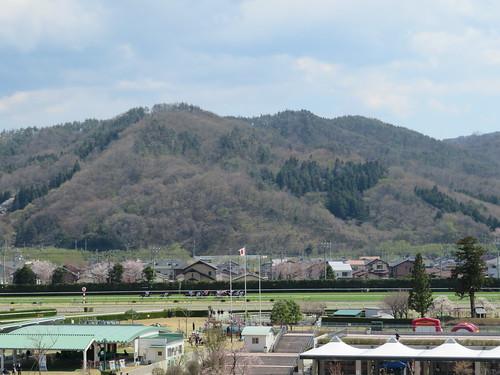 福島競馬場の背後にある山