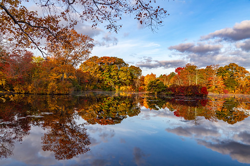 westbrookpond morning longisland newyork autumn fallcolor foliage reflection landscape rpg90901 water sky clouds trees fall fallfoliage symmetry canon 6d canonef24105mmf4lisusm greatriver suffolkcounty pond 2015 october 0816 serene