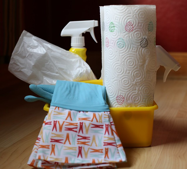 Spring Cleaning Caddy for Kids