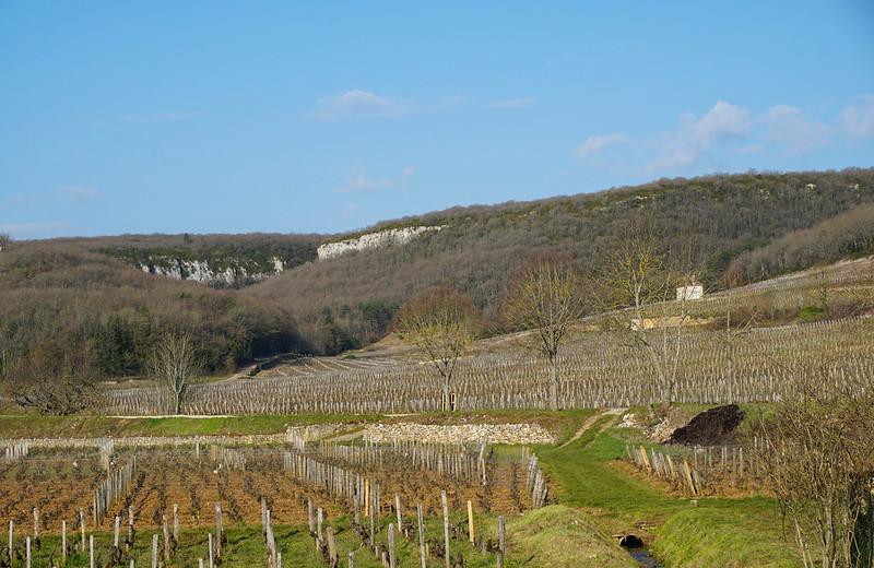 Bourgogne-11.jpg