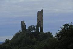 20120919 22 035 Jakobus Burgruine Bäume
