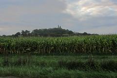 20120919 22 053 Jakobus Hügel Wald Bergruine Feld