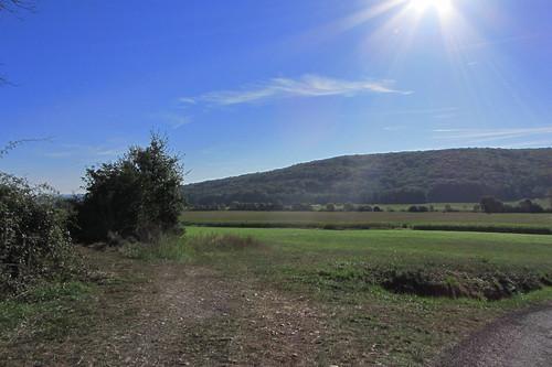 20120920 23 071 Jakobus Weg Sonne Hügel Wald Wiese