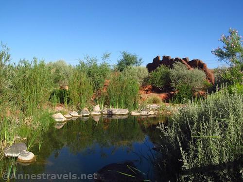 River, desert plants, and the bridge (