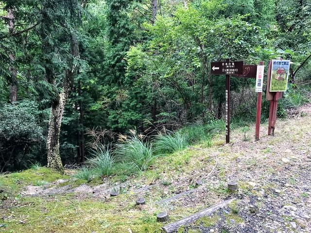 仙ヶ岳 白糸の滝・三ツ淵入口