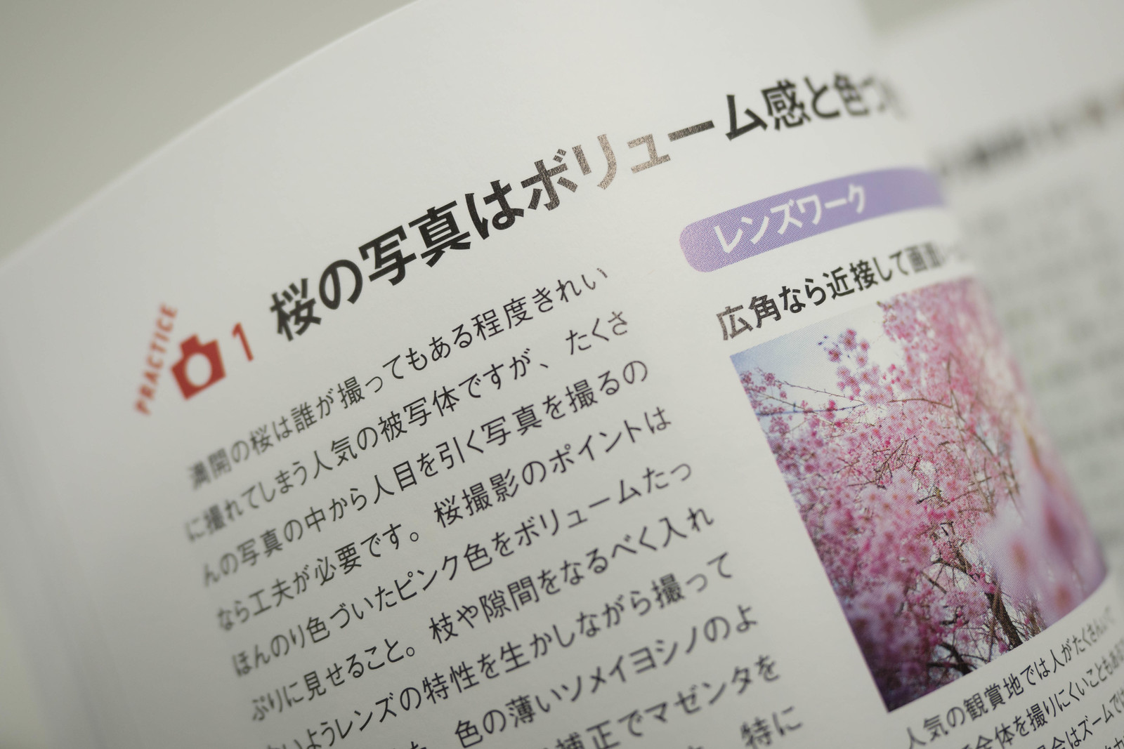 Studio9_book-4